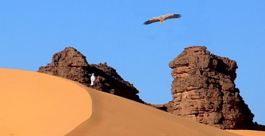 Mali---.png