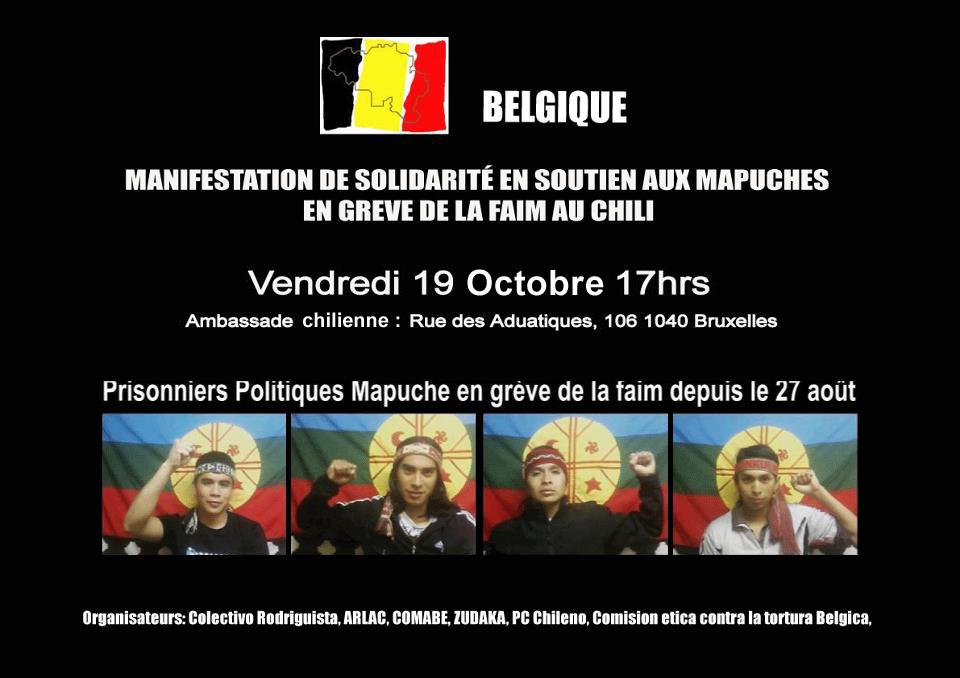 manifestacion_mapuche.jpg