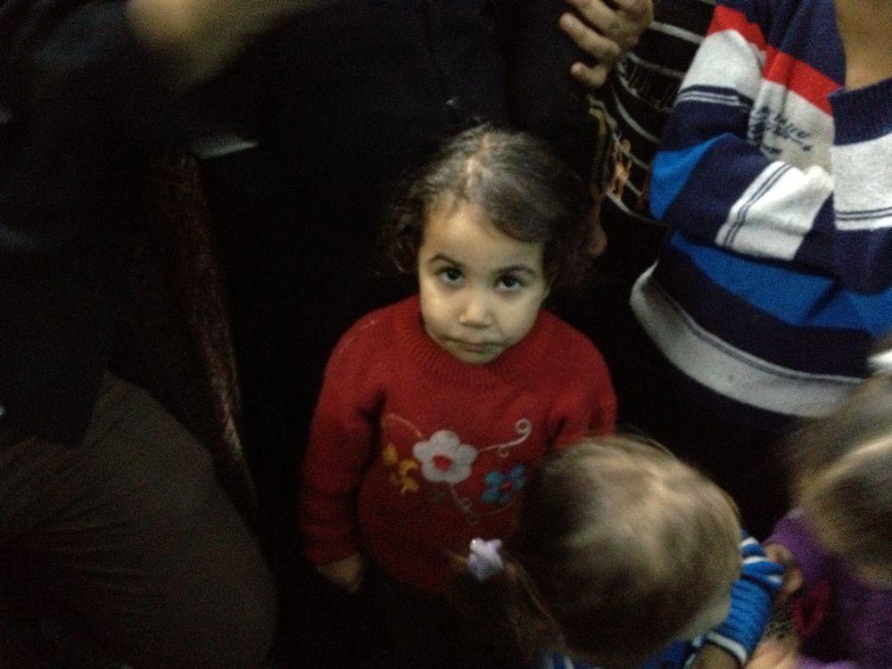 gaza_maram.jpg